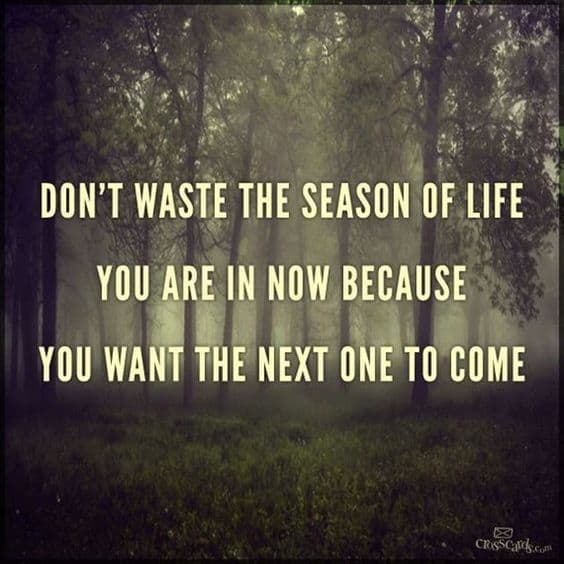 Don't waste the season of life you are in now because you want the next one to come