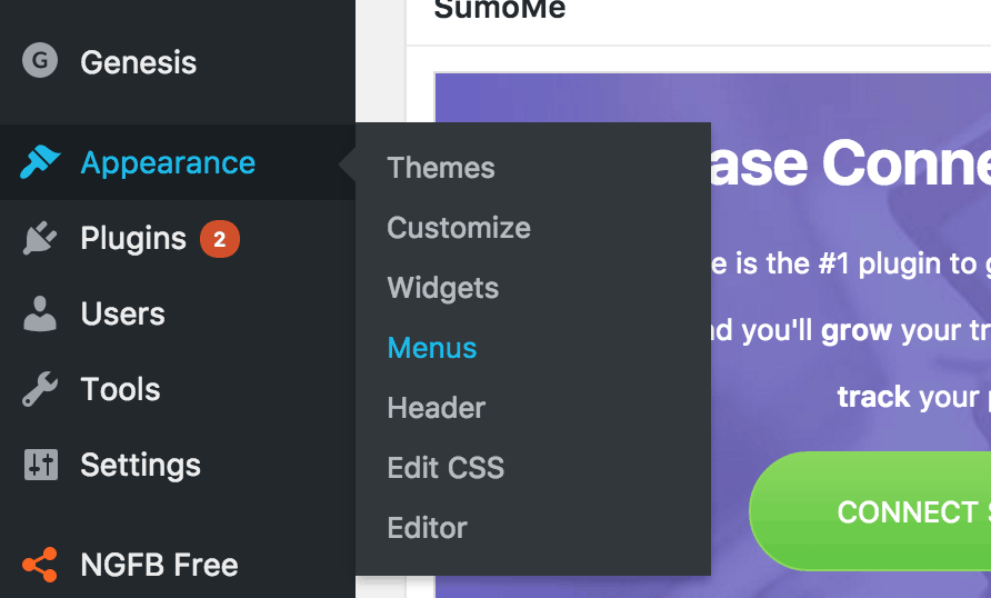 appearance sidebar menu in the WordPress admin