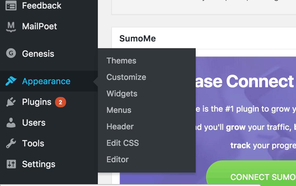 appearance sidebar menu in WordPress admin
