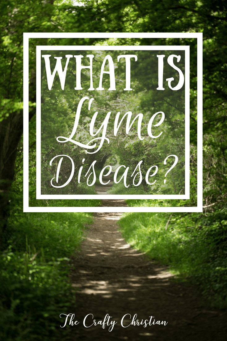 Lyme disease is complicated, to say the least. Some people say that it started as an experiment, while others say that it's grossly over-diagnosed. Then there are those people who are certain they have it, but are left feeling lost after tests come back saying they do not. With all of the inaccuracies surrounding Lyme disease, its difficult to weed through the outdated information and figure out what is true and what is not. Learning Lyme the right way is something that is important not only for doctors and medical professionals, but for anyone who suspects they have it or knows someone who does. So what is the most recent information regarding Lyme?