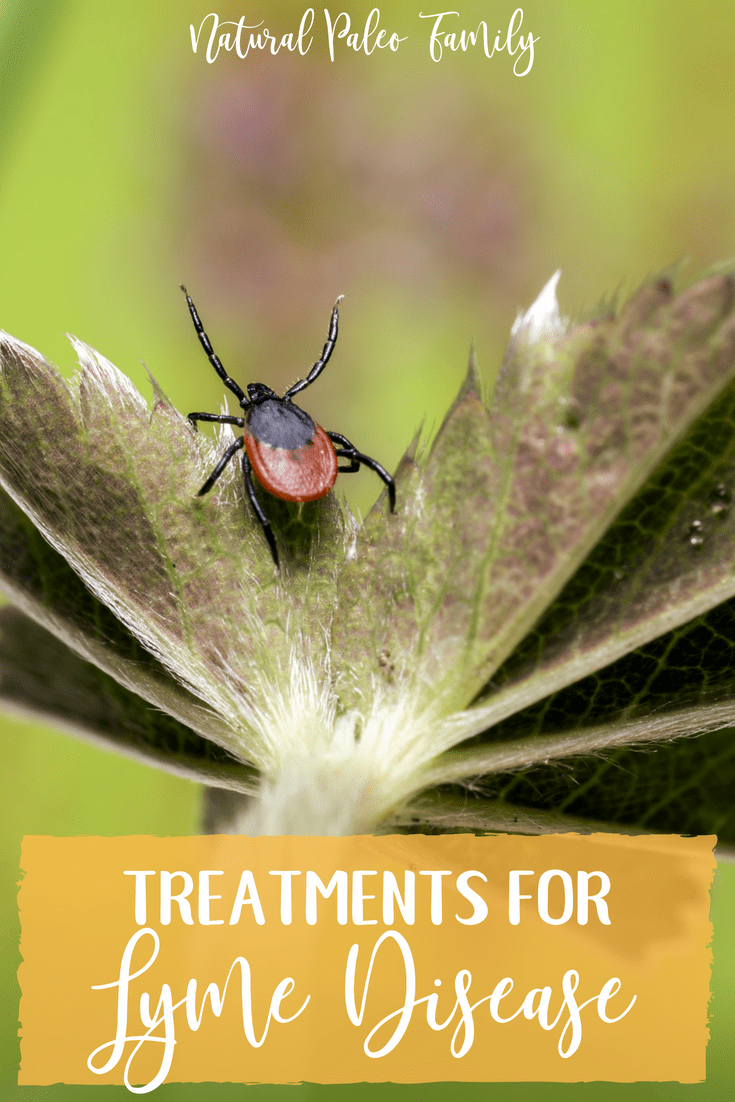 Lyme disease is not easy to understand.  It's complex, highly adaptable, and difficult to diagnose.  Learn about treatments for Lyme disease, and how you can overcome it!