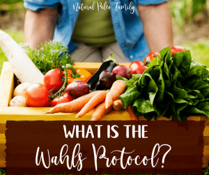 If you're someone who struggles with an autoimmune disease or chronic illness, there's a chance that you've heard of the Wahls Protocol. Reversing chronic illness using food as medicine is not as hard as you may think!