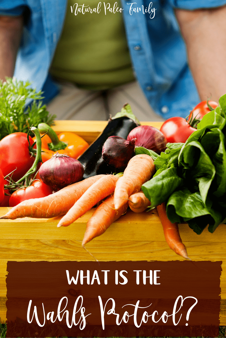 If you're someone who struggles with an autoimmune disease or chronic illness, there's a chance that you've heard of the Wahls Protocol.Reversing chronic illness using food as medicine is not as hard as you may think!