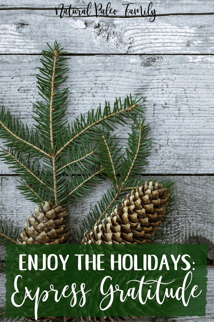 It's no secret that the American holiday season has been over-marketed into a consumerism frenzy.  Take time this holiday season to slow down, express gratitude, and really enjoy who you're with instead of what you're buying.  Bring the joy back into your holidays!