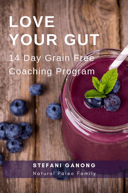 Love your gut 14 day grain free coaching program